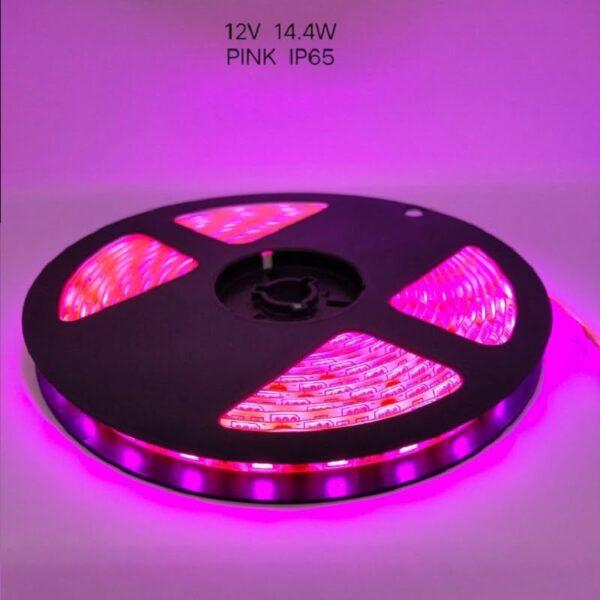 Ρολό LED ταινίας – LED Strip - IP65 - 5m - Pink - 891210
